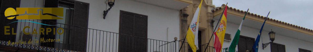 Banner de la biblioteca pública municipal Cervantes