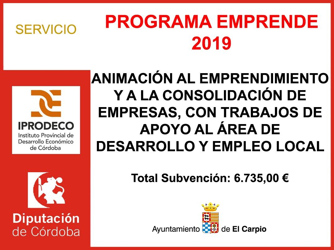 Subvención Diputación - PROGRAMA EMPRENDE 2019 1