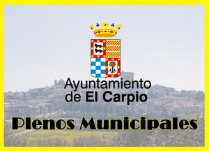 Enlace a plenos municipales en youtube
