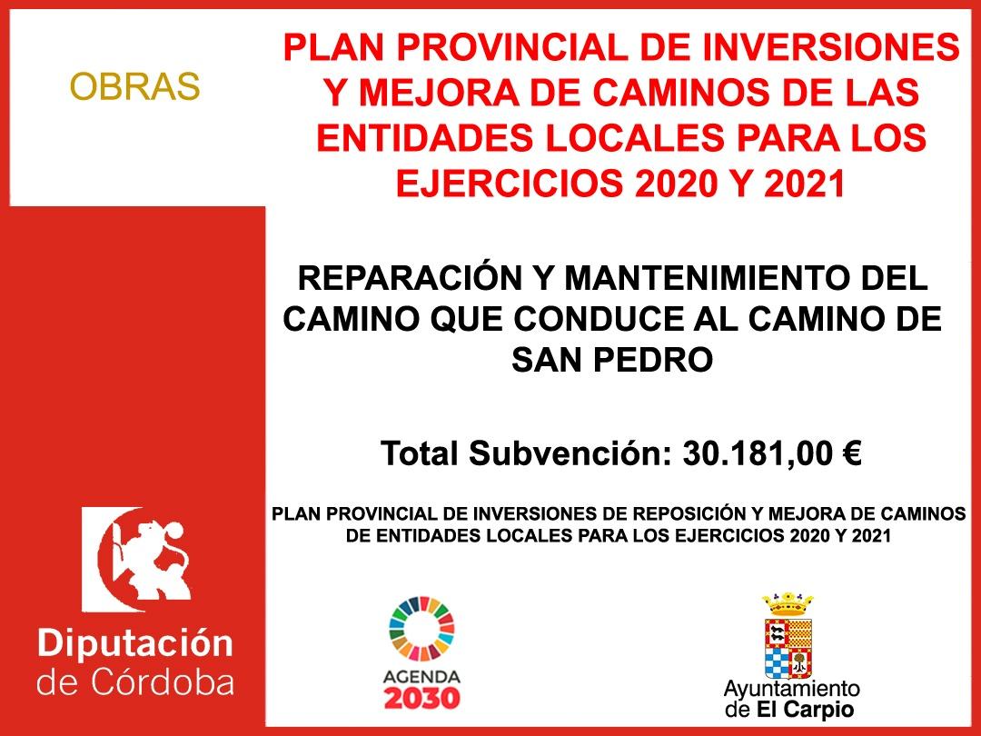 PLAN PROVINCIAL DE INVERSIONES Y MEJORA DE CAMINOS DE LAS ENTIDADES LOCALES PARA LOS EJERCICIOS 2020 Y 2021