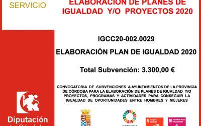 Subvención Diputación – ELABORACIÓN DE PLANES DE IGUALDAD 2020