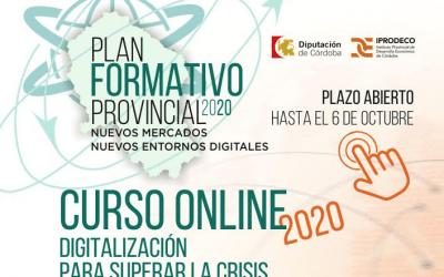PLAN FORMATIVO PROVINCIAL 2020 – DIGITALIZACIÓN PARA SUPERAR A CRISIS