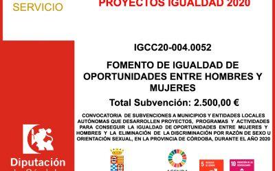 Subvención Diputación – PROYECTOS IGUALDAD 2020