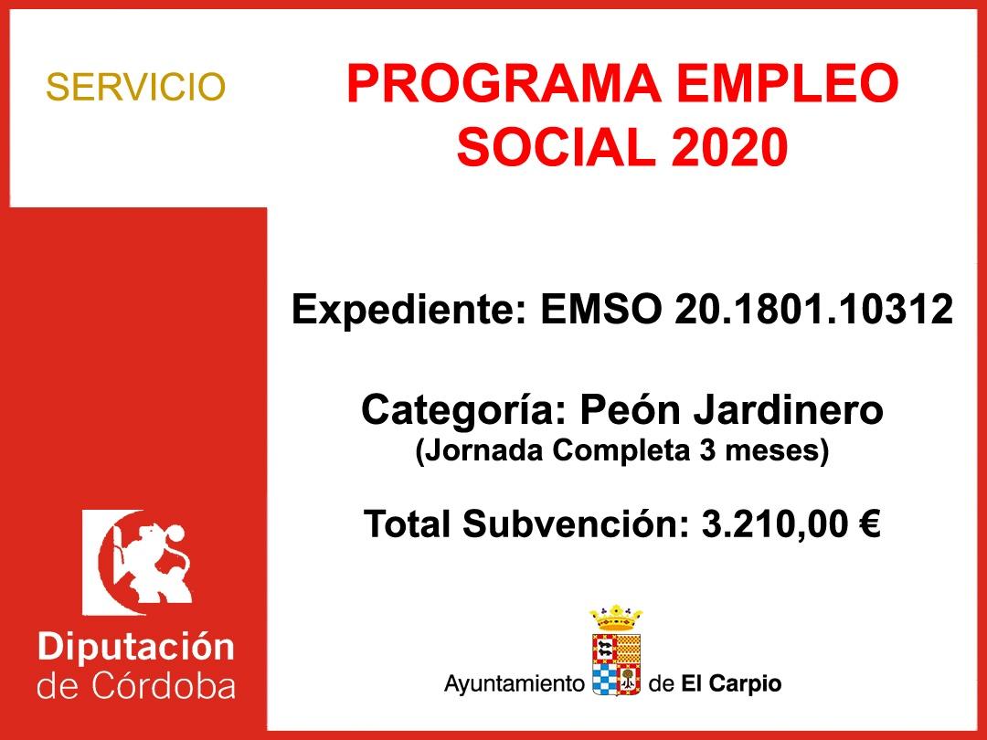 Subvención Diputación – PROGRAMA EMPLEO SOCIAL 2020
