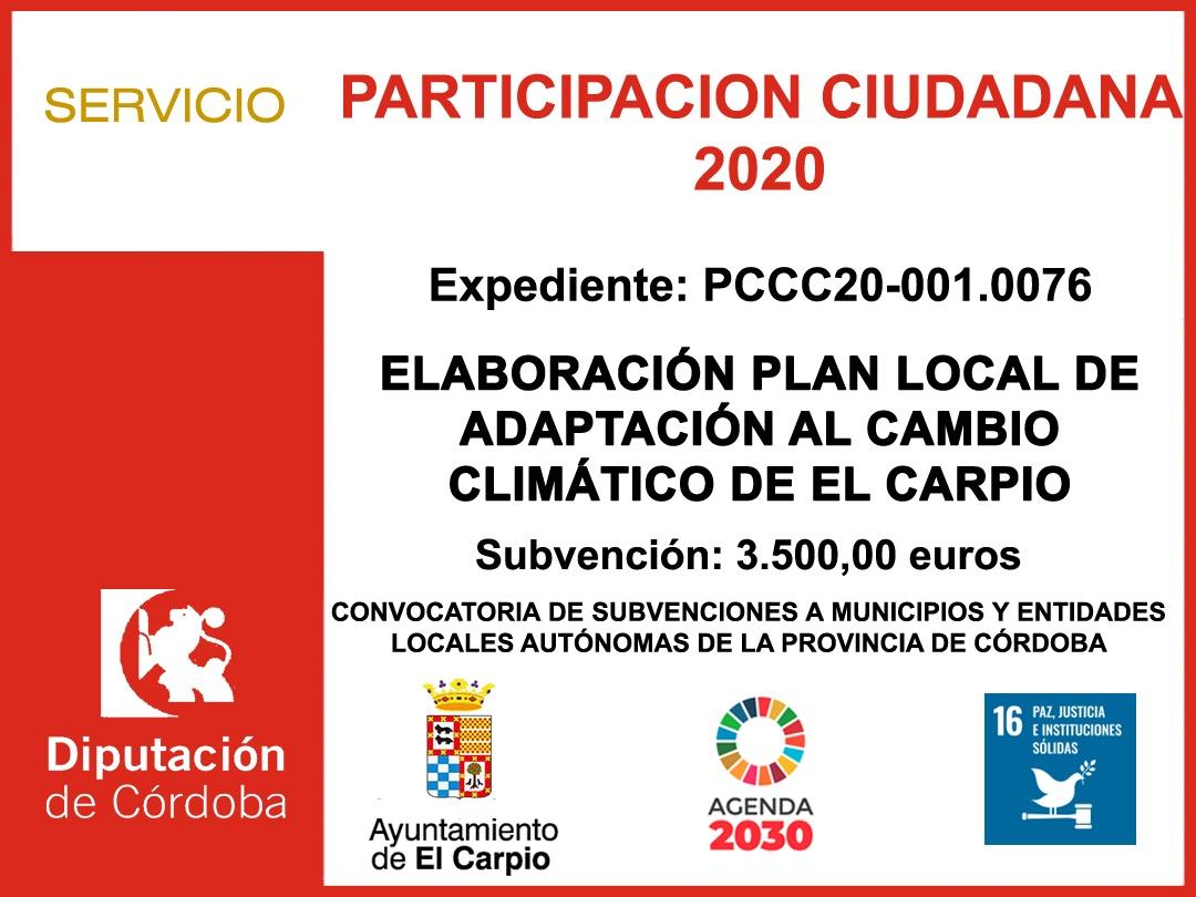 PARTICIPACIÓN CIUDADANA 2020