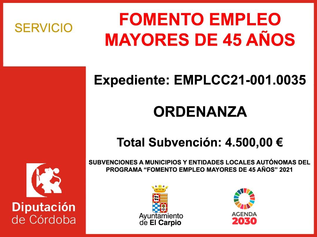 Subvención Diputación – FOMENTO EMPLEO MAYORES 45 AÑOS 2021